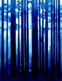 SALOMÉ DEL CAMPO. Bosque, 1993. 258,5 x 198,5 x 2,2 cm. Óleo sobre tela