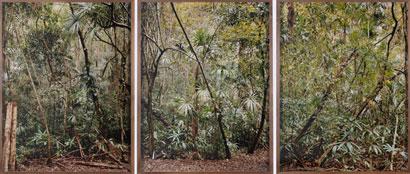 XAVIER RIBAS. Sin título, 2006. Serie Estructuras invisibles 6-7-8. Nº Edición 2/6. Tríptico (155 x 120 cm c/u). Fotografía. Impresión digital