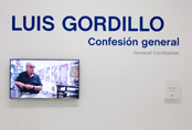 Photographic Tour by the exhibition Luis Gordillo: General Confession