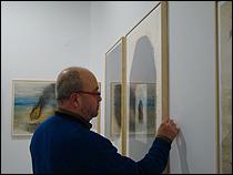 Exposición Alfonso Albacete. Asuntos internos. Salas CAAC, 2014