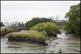 LARA ALMARCEGUI. Guide to the Wastelands of the Lea Valley, 12 Empty Spaces Await the London Olympics, 2009