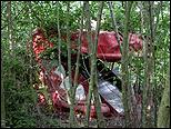 LARA ALMARCEGUI. International Garden Festival Site, Liverpool, 2004. CAAC COLLECTION