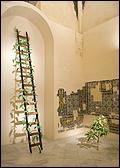 FEDERICO GUZMÁN. La Pinta, 2007 Installation. CAAC Collection