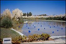 MAURA SHEEHAN. Lagunas, 2000. Instalación. Fragmentos de mármol pintados. Medidas variables. Fotografía de Guillermo Mendo